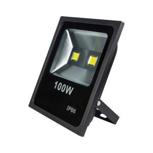 100W PROIECTOR LED SLIM Lumina Rece-NV-TGCOB-100W-R