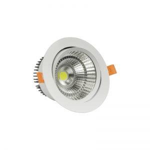 SPOT LED 20W COB Lumina Rece-NV-TDCOB-20W-R ORIENTABIL