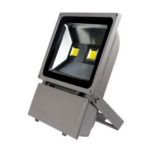 100W PROIECTOR LED Lumina Rece-NV-TGCOB-100W-R